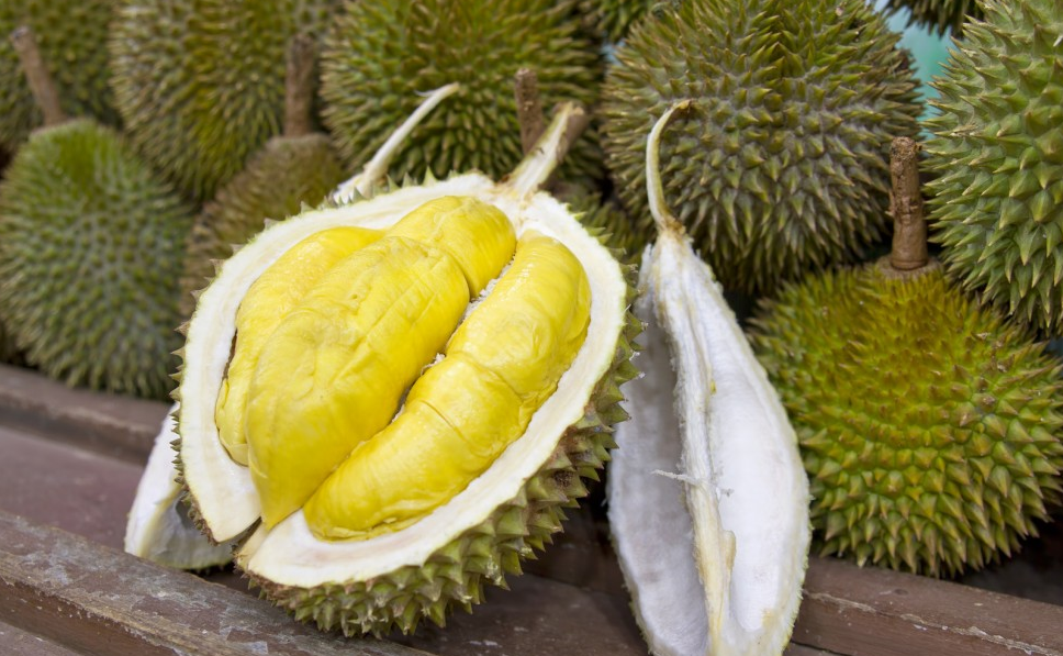 Cycling Secret: Durian Fruit the New Super Food? | Bikedan in ...